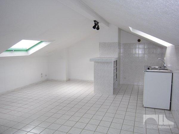 APPARTEMENT T1 A LOUER - ST ETIENNE FAURIEL - 30 m2 - 295 € charges comprises par mois