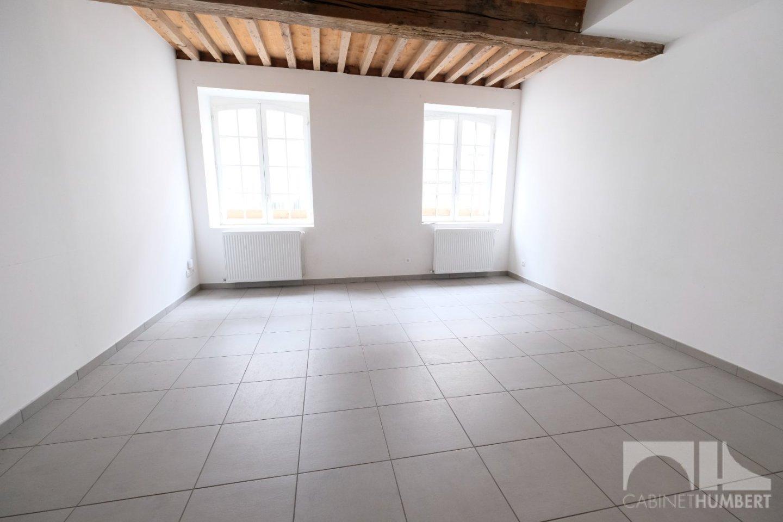 APPARTEMENT T2 A VENDRE - ST ETIENNE CENTRE VILLE - 55 m2 - 75000 €