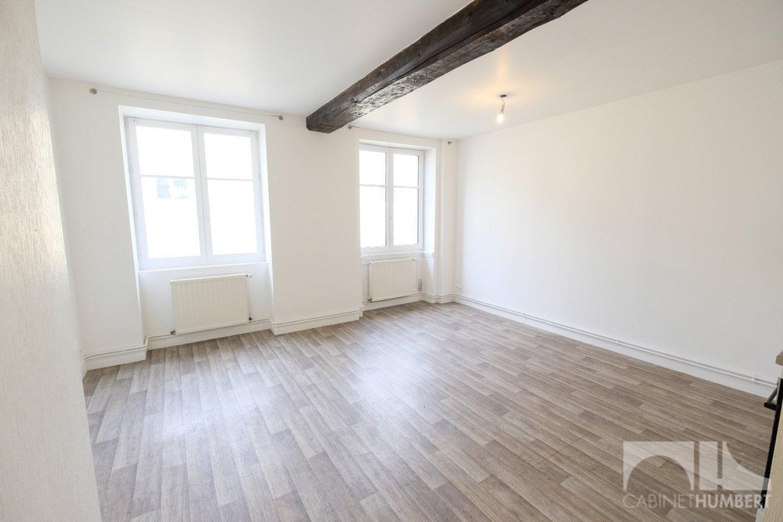 APPARTEMENT T3 A LOUER - ST ETIENNE CENTRE VILLE - 63,39 m2 - 510 € charges comprises par mois